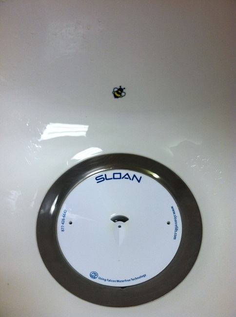 A little bumblebee painted inside the urinal to aim at when you pee, which has been proven through studies to reduce 'splash' while urinating