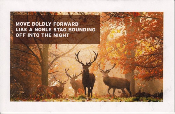 Move boldly forward | Like a noble stag bounding | off into the night