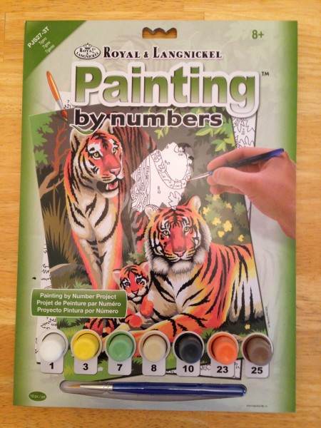 New paint-by-number set with the same color paints I was using for mine.