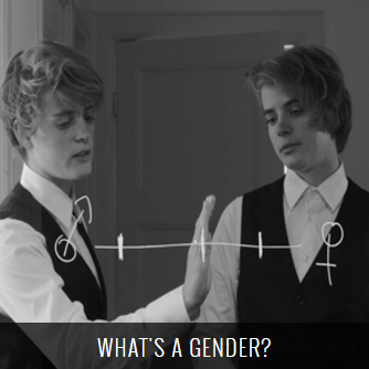 """What""""s A Gender?"""