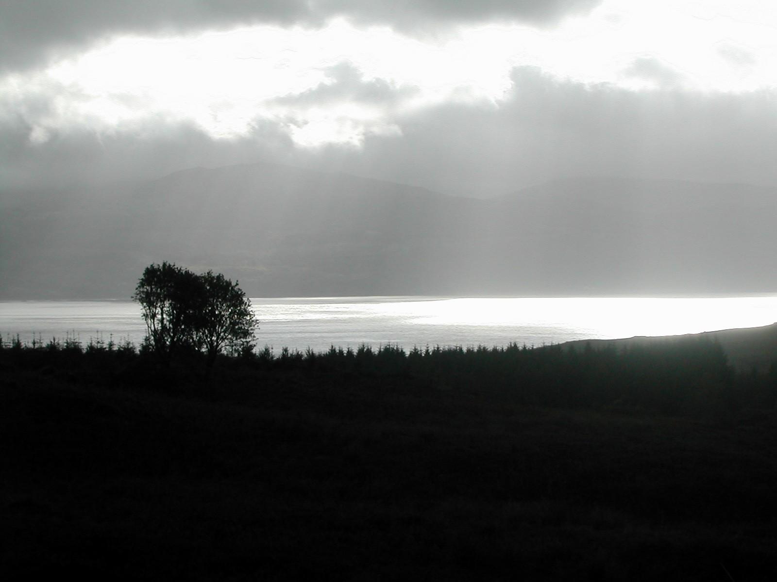 Loch Fyne - Argyll 2006