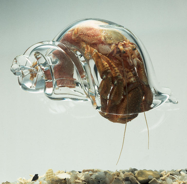 Frank Greenaway - Hermit Crab