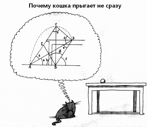 Почему кошка не прыгает сразу