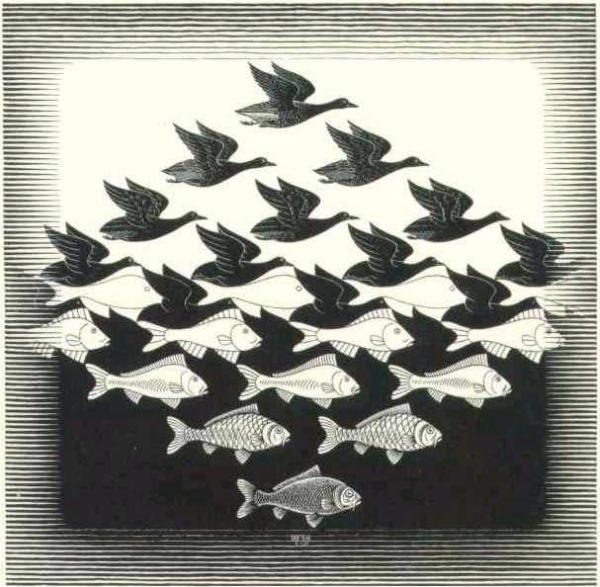 illusion26