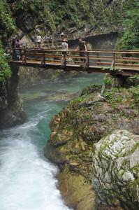 мосты Винтгара