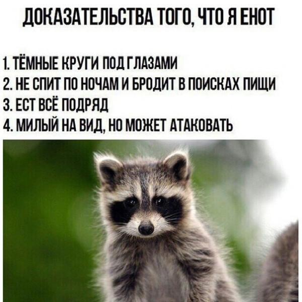 enotya