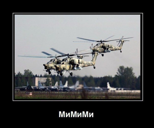 mimimi1