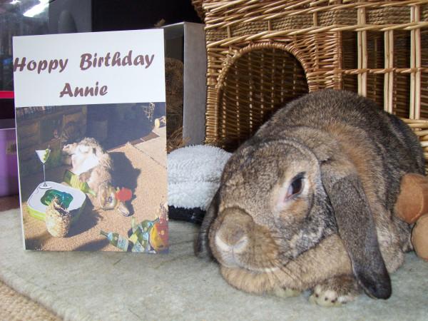 Annies Birthday