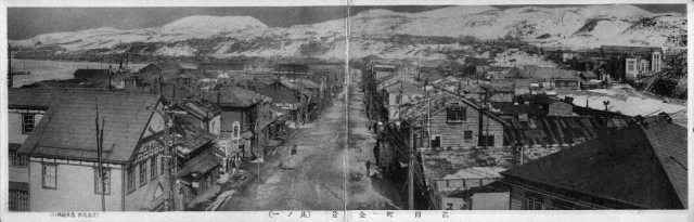 Панорамный вид на город Маока