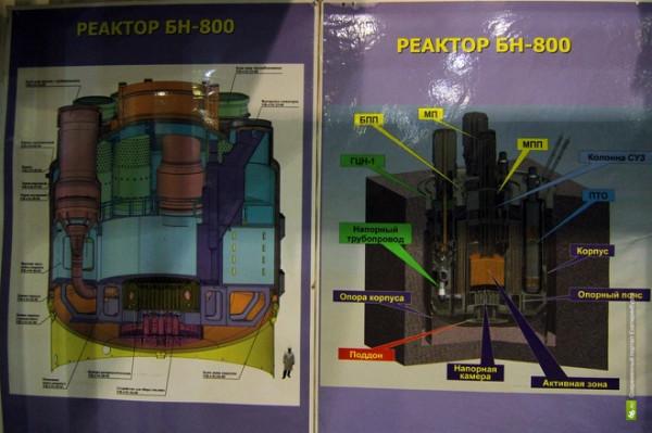 Схема реактора БН-800