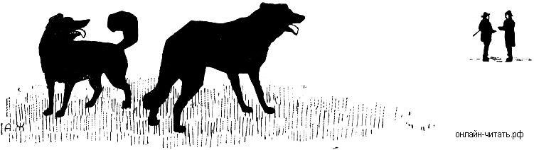 раньше прохожие и собаки картинки пики активности обычно