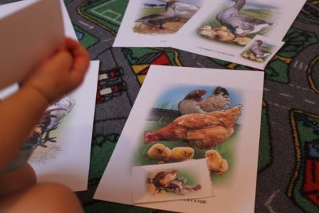 Логопедические занятия для детей с общим недоразвитием