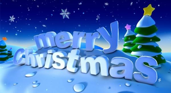 2014_christmas_1