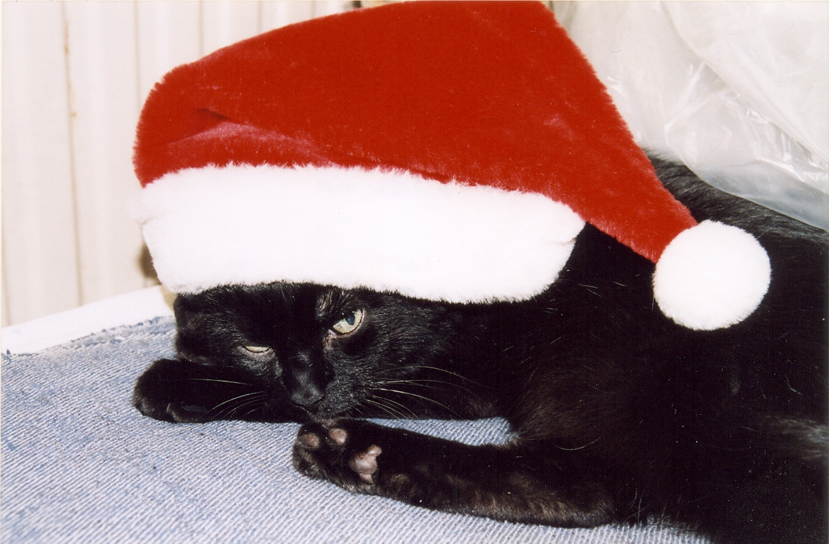 bad_santa_mini