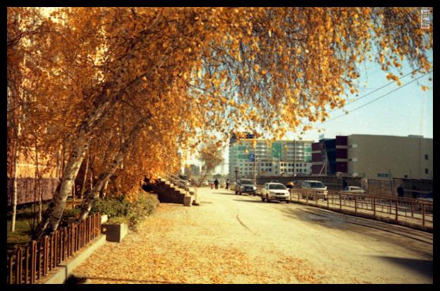 Золотая осень в якутии картинки