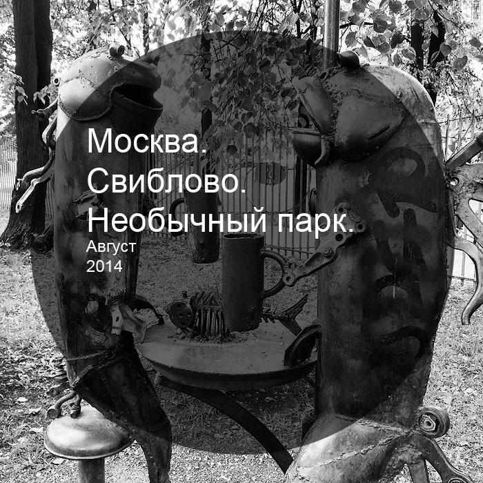 IMG_0105 copy