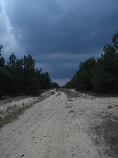 http://ic.pics.livejournal.com/darkheavy/14542380/73338/73338_original.jpg