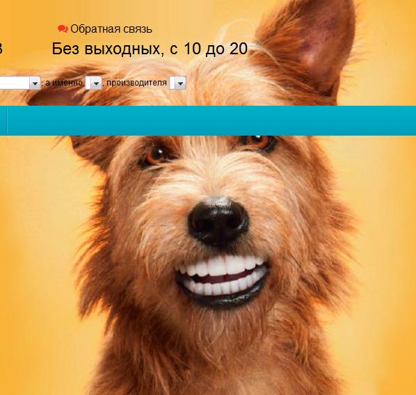 собака л 54