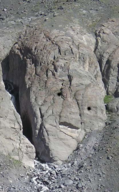 каменголова