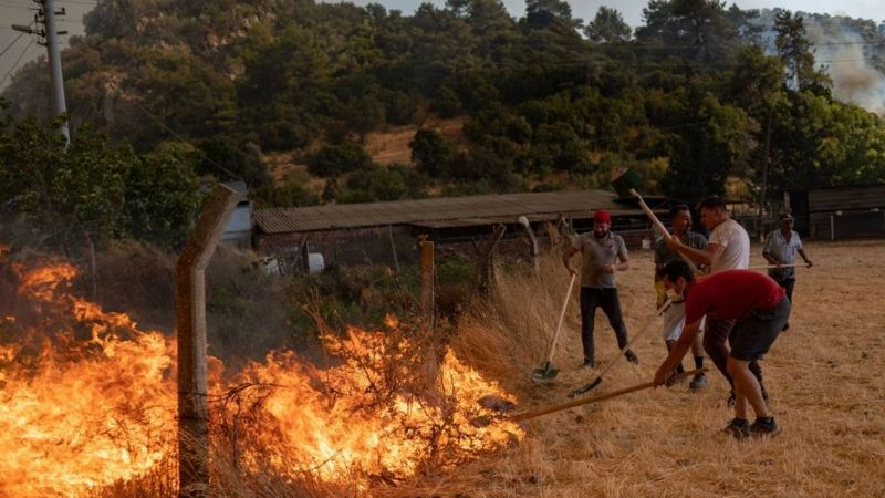 Местные жители в районе Мармарис пытаются сами остановить огонь