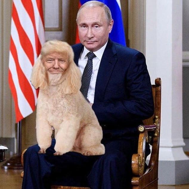 Путин с щенком Трампом