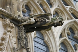 Gargoyle on York Minster