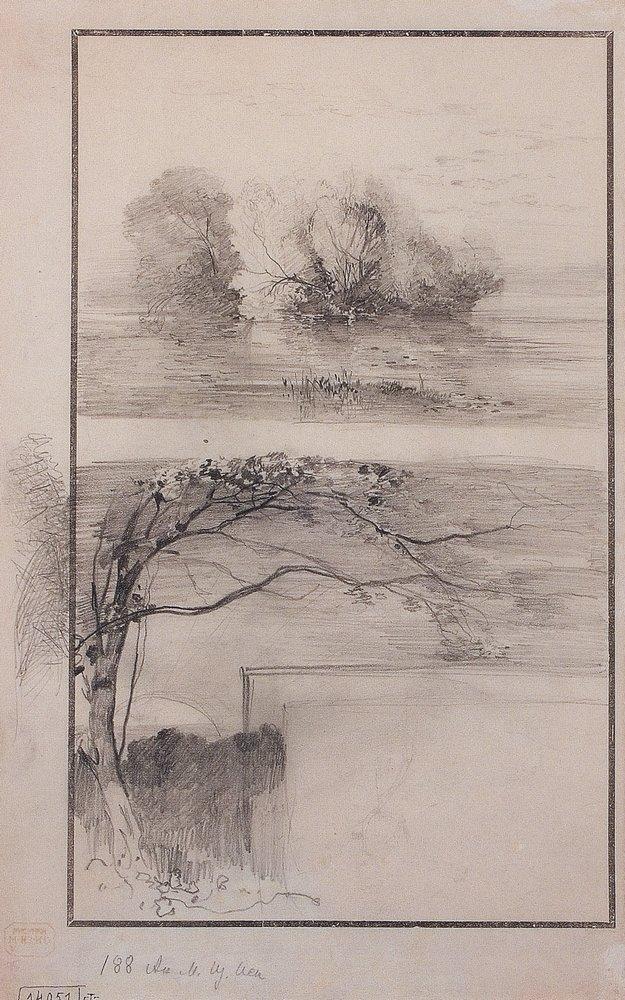 Деревья у воды. Ветви деревьев. 1870-е