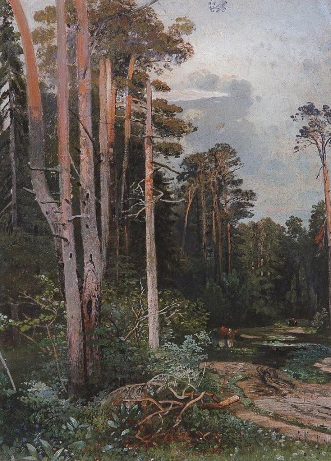 Лесная дорога в Сокольниках. 1860-е