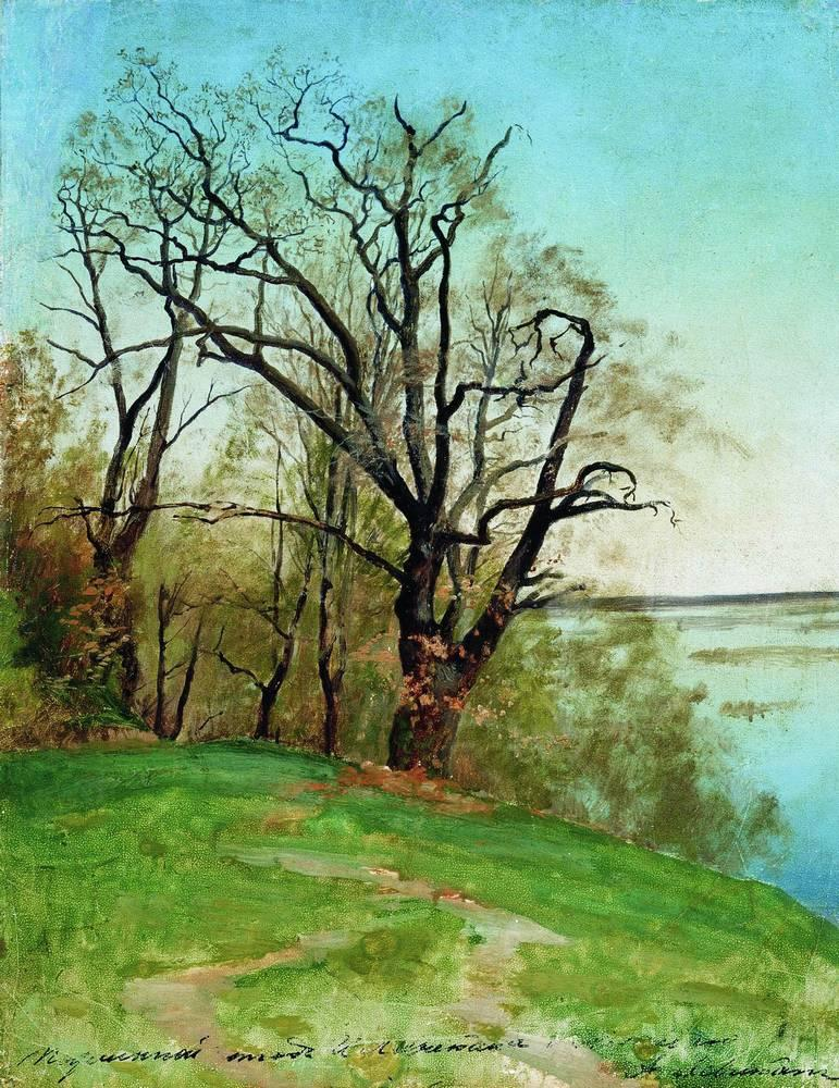 Дуб на берегу реки. 1887