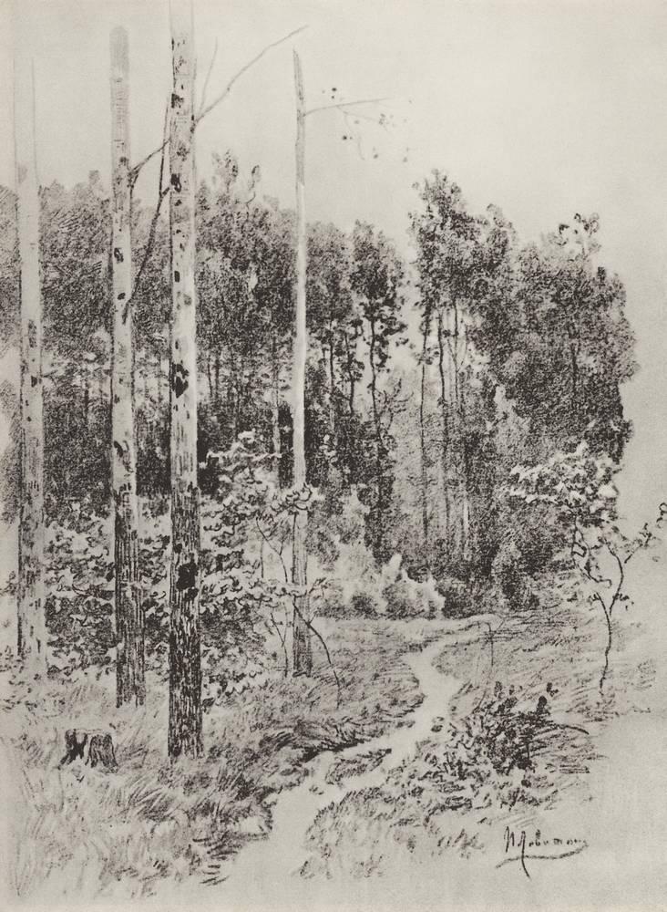 Лесная тропинка. 1884