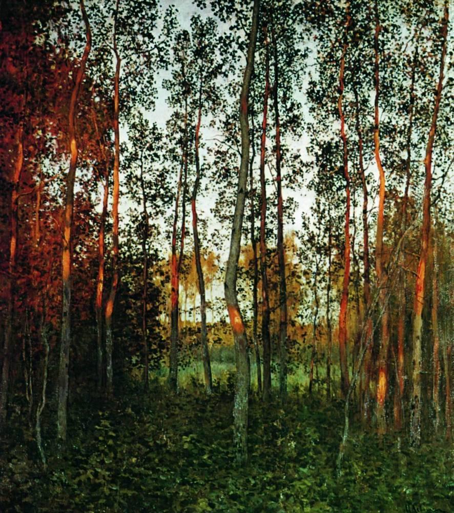 Последние лучи солнца. Осиновый лес. 1897