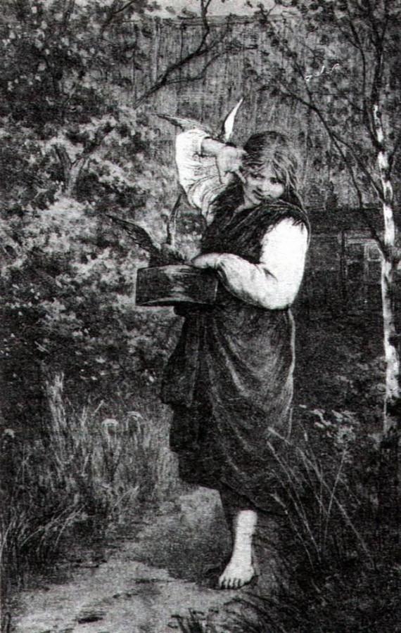 Любимцы. 1882
