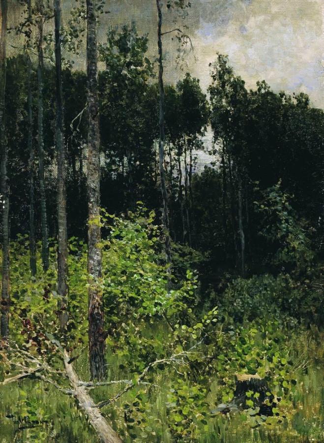 Осиновая рощица. Серый день. 1884