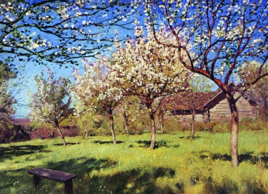 Цветущие яблони3. 1896