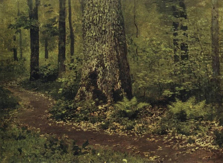 Тропинка в лиственном лесу. Папоротники. Около 1895