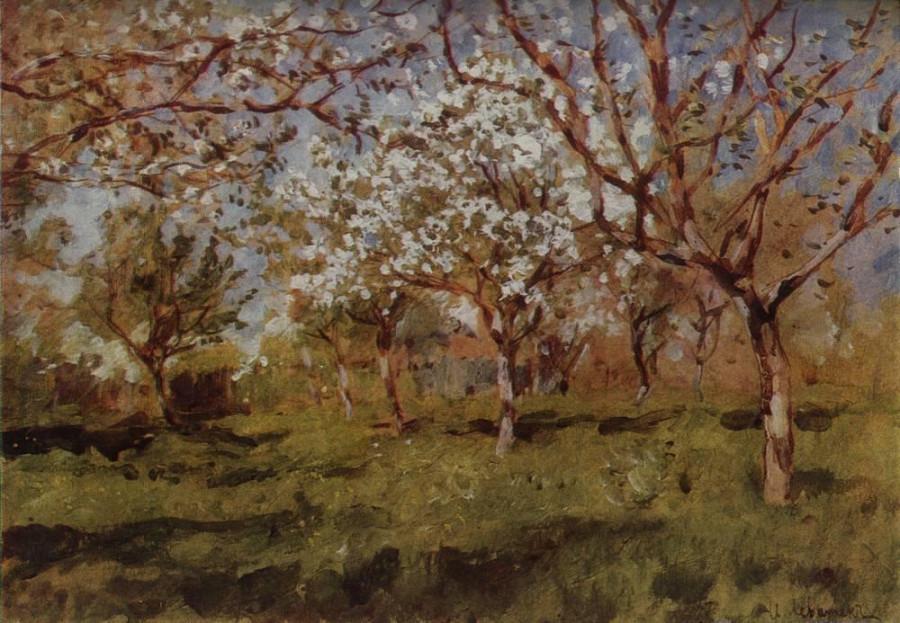 Цветущие яблони2. 1896