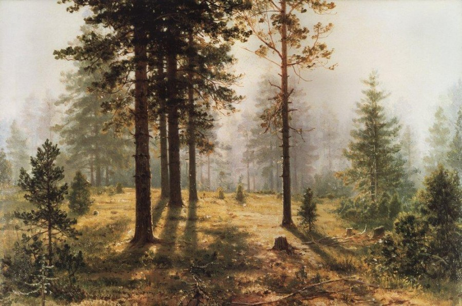 3 Туман в лесу. 1890-е.jpg