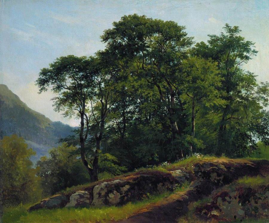 Буковый лес в Швейцарии. 1863.jpg