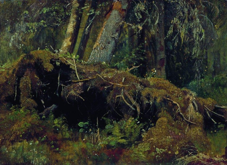 Бурелом. 1880.jpg