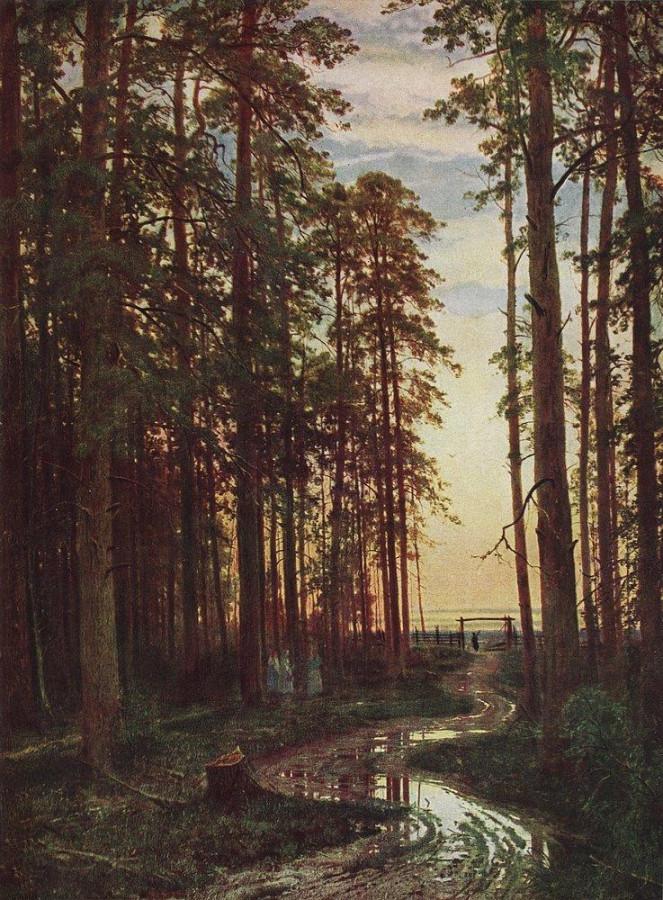 Вечер в сосновом лесу. 1875.jpg