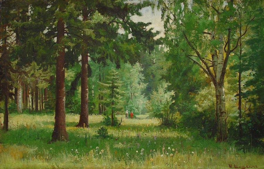Дети в лесу.jpg