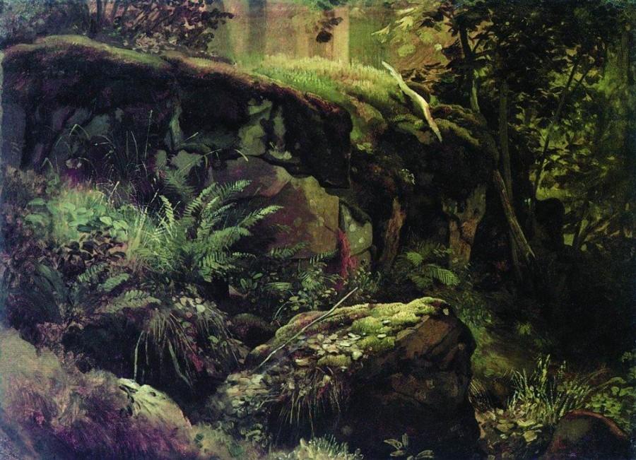 Камни в лесу. Валаам. Между 1858 и 1860.jpg
