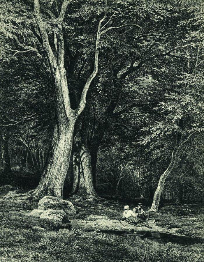 Лес2. 1869.jpg