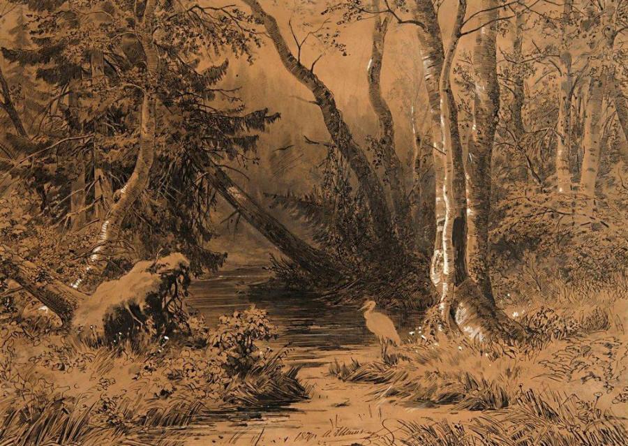Лесная глушь. 1870.jpg