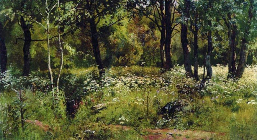 Лесная поляна. Конец 1880-х - начало 1890-х.jpg