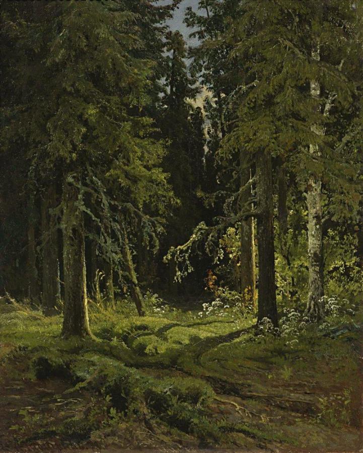 Лесной пейзаж. 1878.jpg
