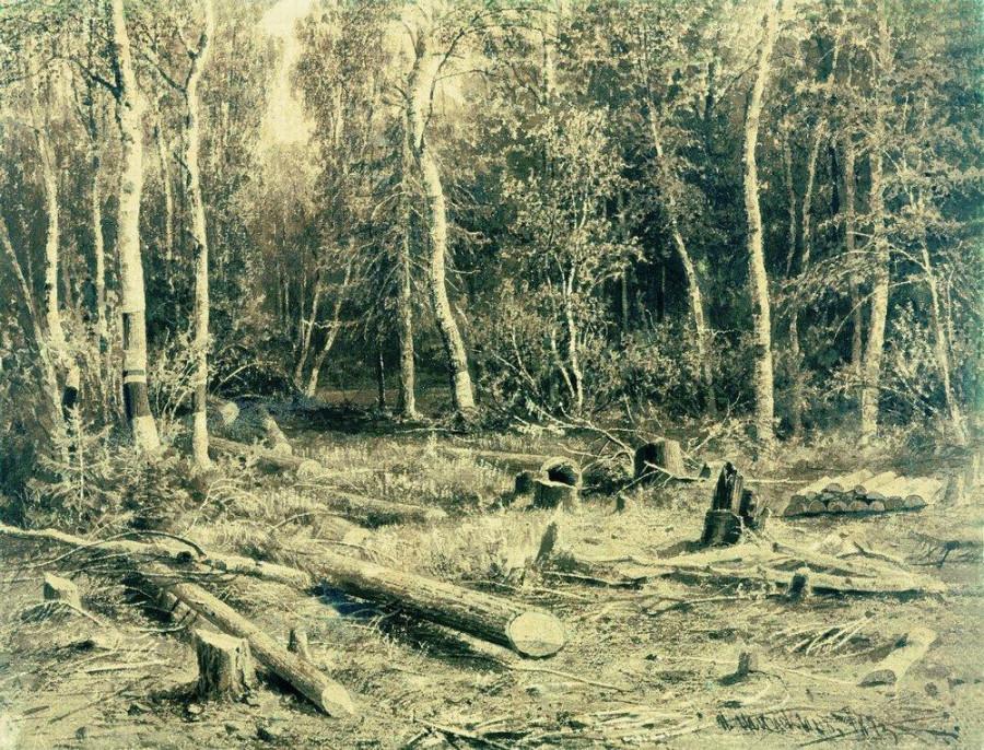 Лесной пейзаж3.jpg