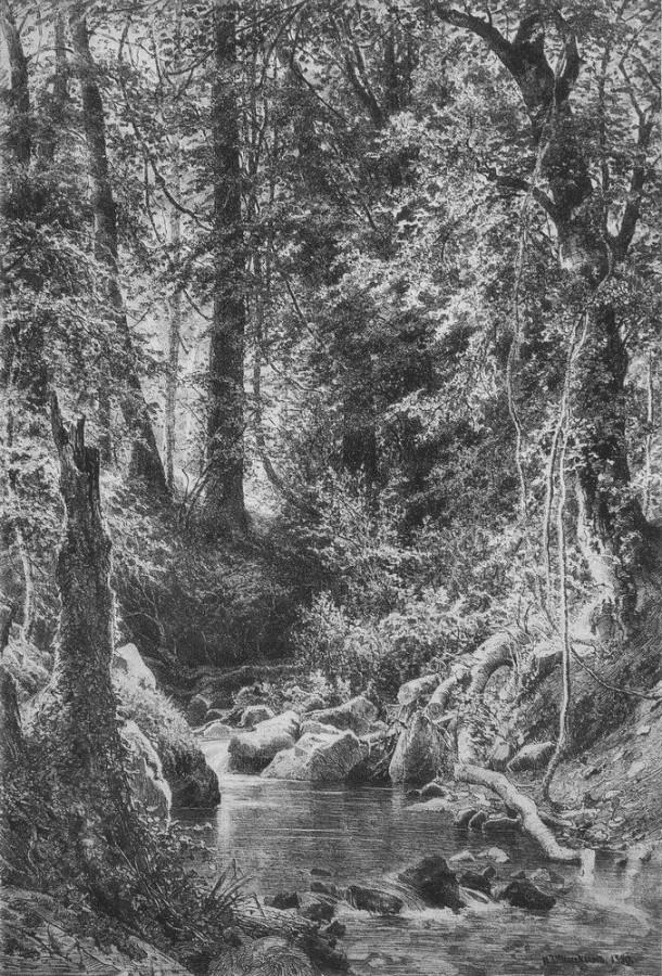 Лесной ручей. 1880.jpg