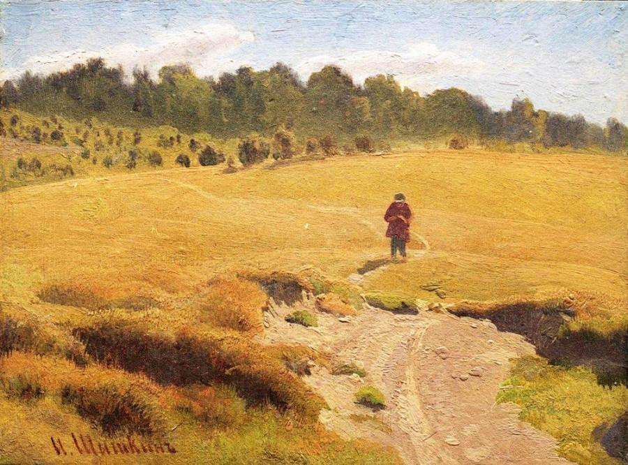 Мальчик в поле.jpg