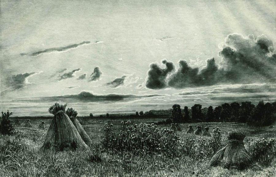 Поле. 1886.jpg